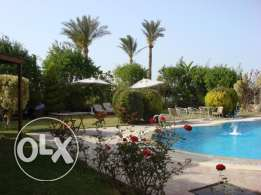 Owner Villa lux 1140m sale golf lake zayed compound Pool/Elevator