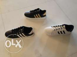 Superstar Fashionable Shoes