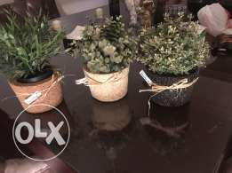 natural stone pots for sale