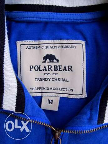 shirt Brand Polar Bear Blue Medium المعادي -  3
