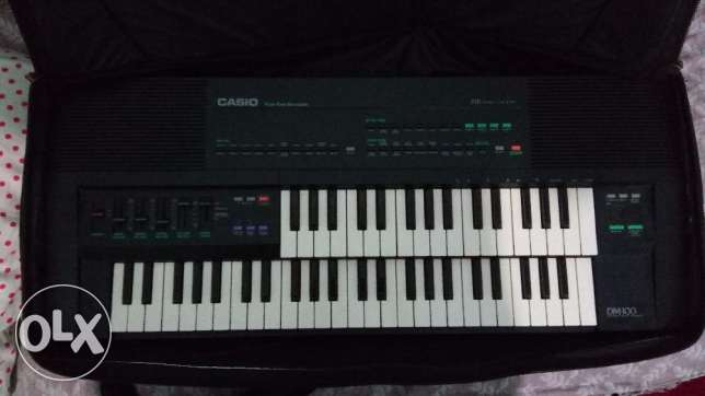 Casio DM-100 For the professional