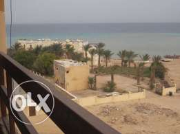 very fantastic flat panorama see view with incredible price