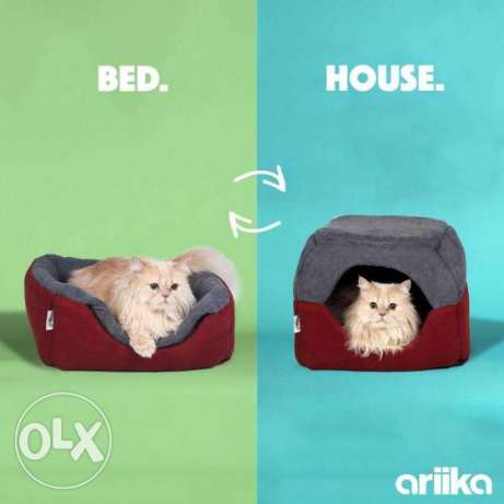 Cat house and bed from Arika - بيت لقطه من اريكا