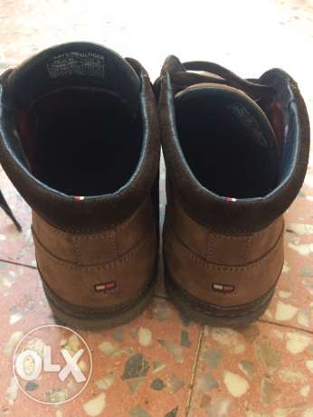 tommy hilfiger new felix 5n shoes size 43 الدقى  -  1