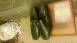Imported Polo classic shoes
