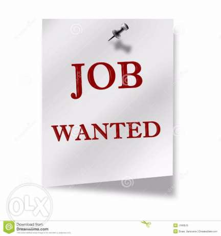 Need a job in sharqia