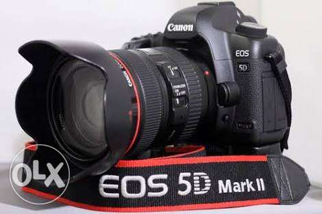 مطلوب ( كانون 5D مارك 2 ) بسررعه Canon Mark 2