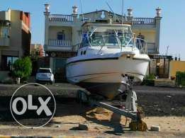 Boat Boston whaler 31 ft USA