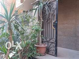 Ground floor for companies next to Nasr St in Maadi for rent or sale!