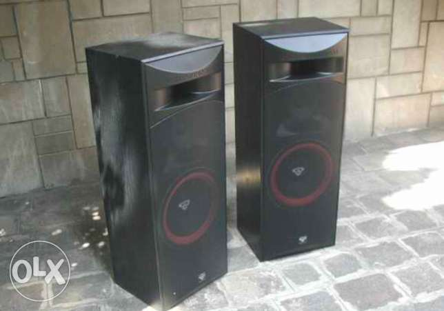 Cerwin Vega Tower Speakers