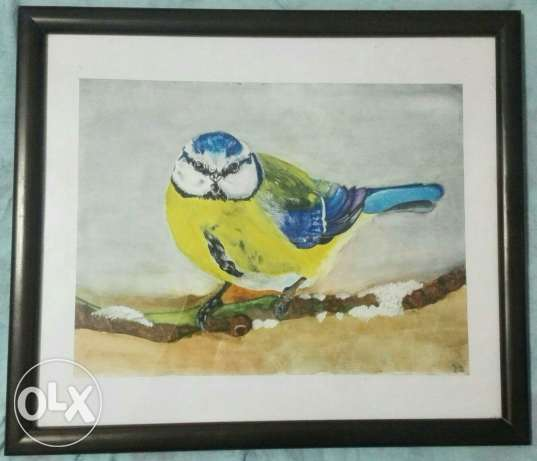 Aquarelle bird كفر عبدو -  2