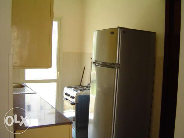 a new decorted and furnished two bedroom flat for rent in agouza
