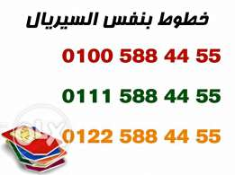 only one in egypt 3 numbers with the same serial