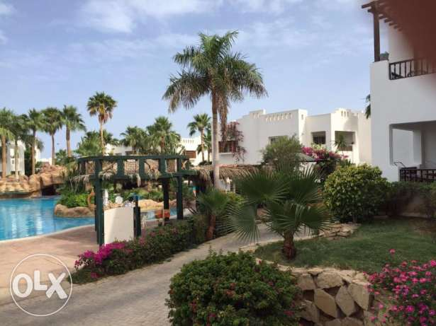 For long term rent and sale1 bedroom in Delta Sharm