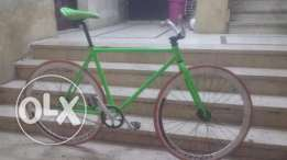 Fixed Bike For Sell