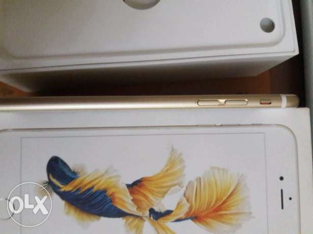 iphone 6s plus 16g Gold عين شمس -  3