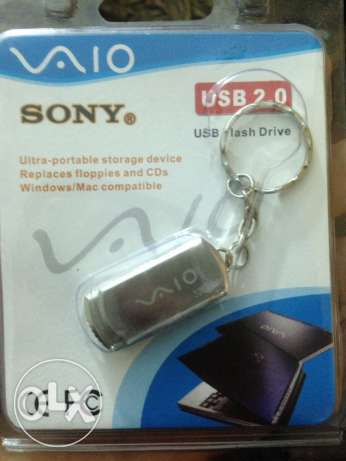flash memory 32 giga sony