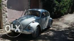 vw beetles فولكس بيتلز 73
