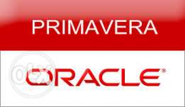 حصريا Primavera project management