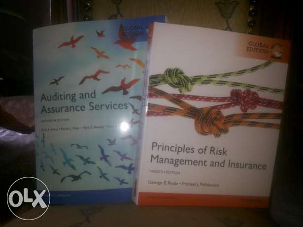 Auditing and management books