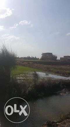 10Land for Sale