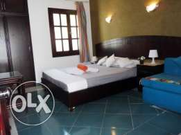 Delta Sharm Newly Decorated Studio for Holidays