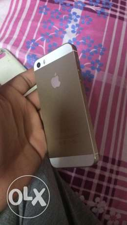 iPhone 5s gold الزيتون -  1