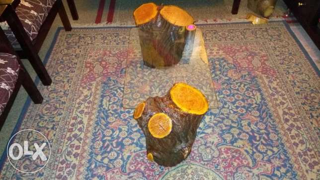 Natural Jungle wood glass table طنطا -  3