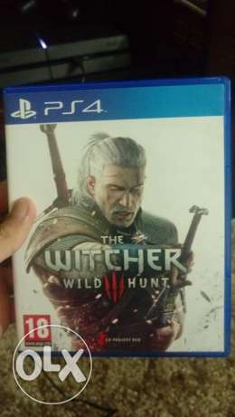The witcher 3 new