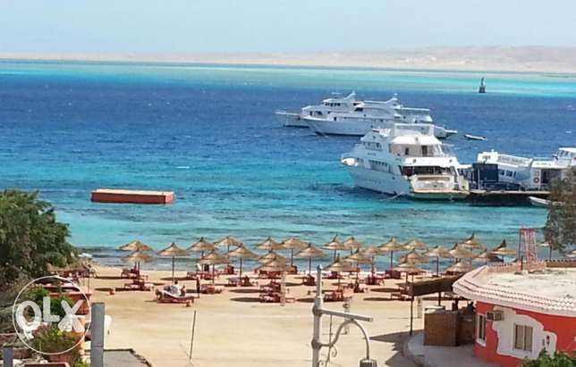 Sea view Studio in center hurghada,.installment for 3 years. الغردقة -  2