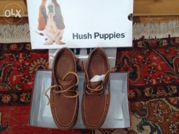 Original with box not used Hush puppies men's Shoe