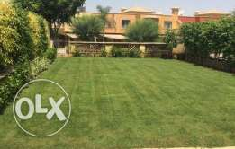 Twin House For Rent In Palm Hills - 6 October -