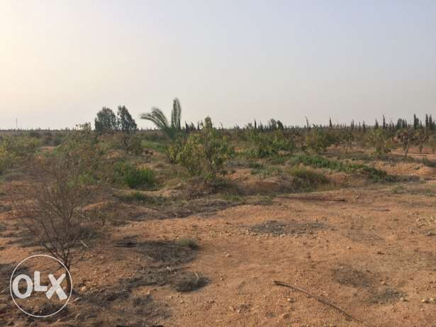 Land For Sale in Ofok