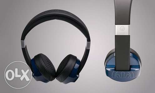 Original Carbide ifrogz Headphones.
