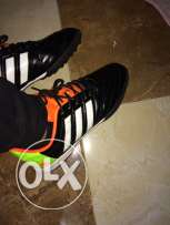 Shoes  Adidas copy