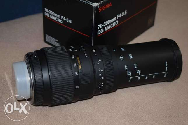 sigma lens 70-300 for Nikon auto focus with macro الإسكندرية -  7