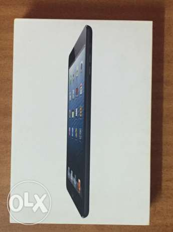 ipad mini 16 gp wifi only